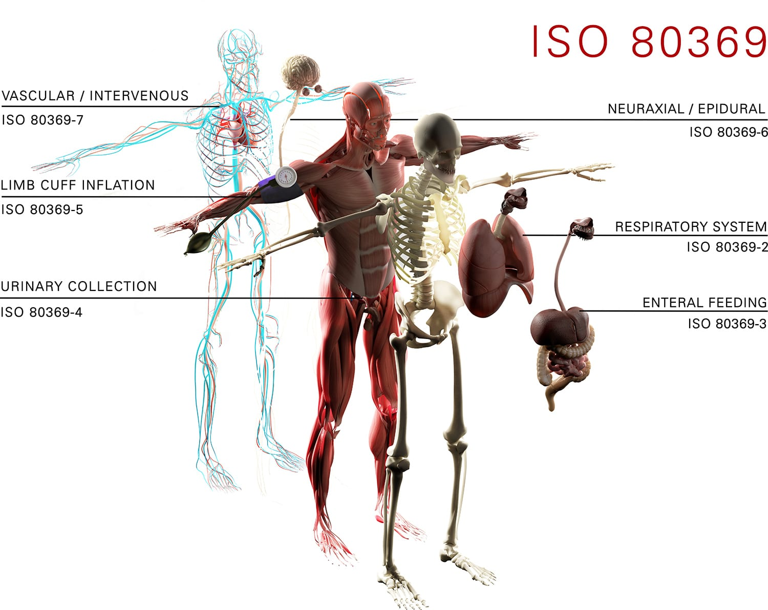 ISO connections diagram